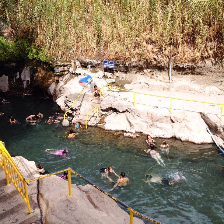Pica un encantador oasis, ubicado en la Región de Tarapaca. Chile.