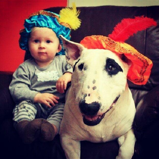 <b>Esto refleja el porqué los perros son los mejores amigos.</b>