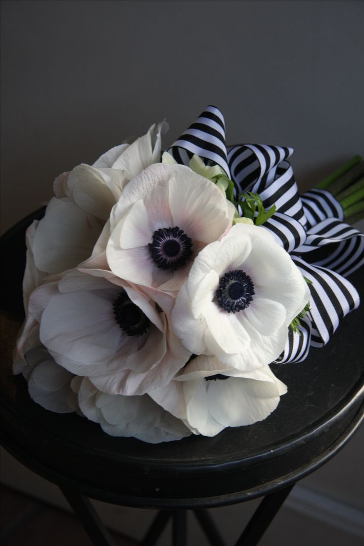 just love this, Spring stripes & the lovely Anemones... Wedding bouquet idea of white anemone with blk/wht striped ribbon...