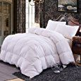 Amazon.com: Topsleepy Luxurious All Size Bedding Goose Down Filling Comforter, White (King Size): Home & Kitchen
