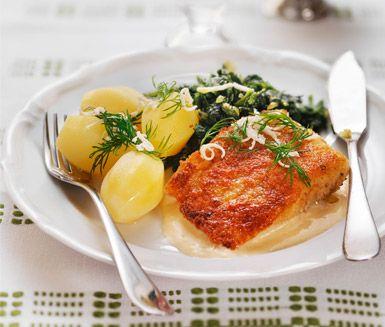 Med detta recept kan du göra en vackert gyllenbrun torsk, pepparrotssås och nyttig spenat till middag. Stek den ströbrödspanerade fisken och fräs ihop en god spenat- och lökröra innan du dukar upp med potatis, gräddig, god sås och syrlig citron.