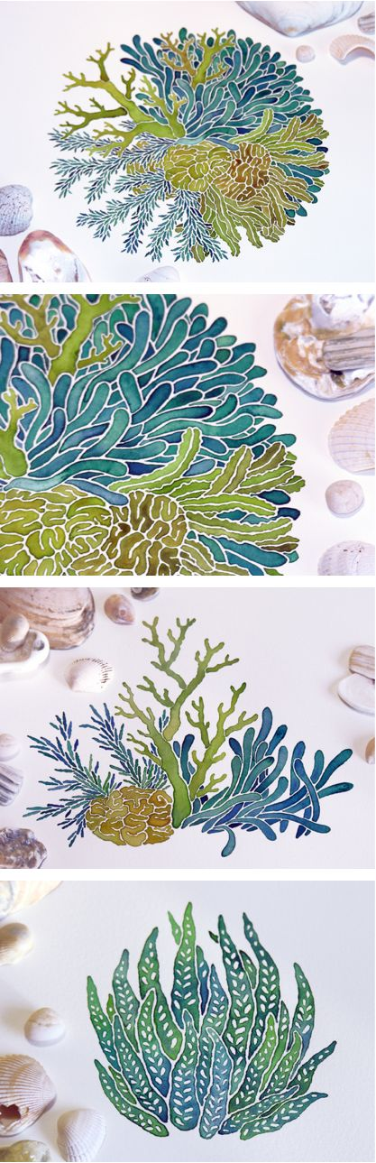 Awesome watercolor illustration, love the fades within the corals.    by Sasha Prood