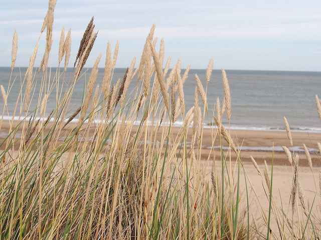 Landscapes, Winterton on sea,