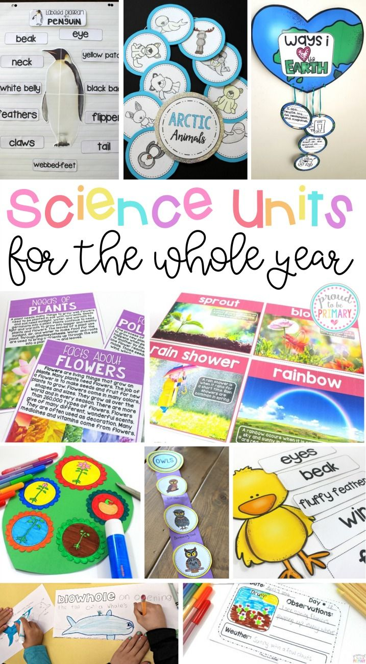 Non-fiction & science units for the entire year that cover many animals and life sciences topics for each season (fall, winter, spring, and summer). Units and activities included are research report writing, fact finding, and life cycle activities. #lifecycles #animalscience #nonfiction #scienceforkids #animalreport