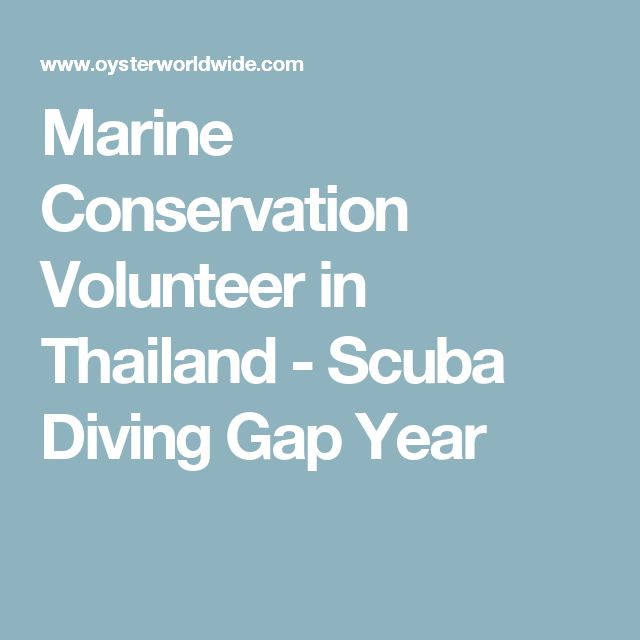 Marine Conservation Volunteer in Thailand - Scuba Diving Gap Year