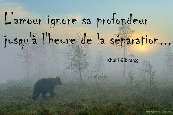 citation L'amour ignore sa profondeur, jusqu'à l'heur de la séparation Khalil Gibran