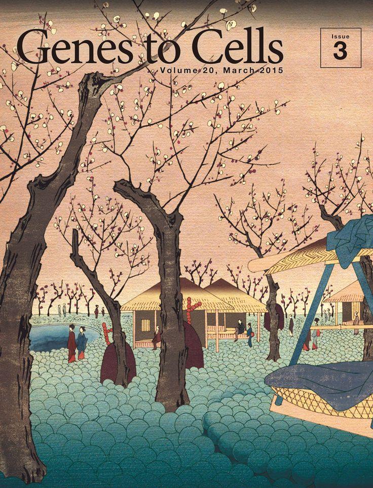 糖鎖を模した梅が香る細胞膜庭園/Vol. 20, No. 3 (March 2015)