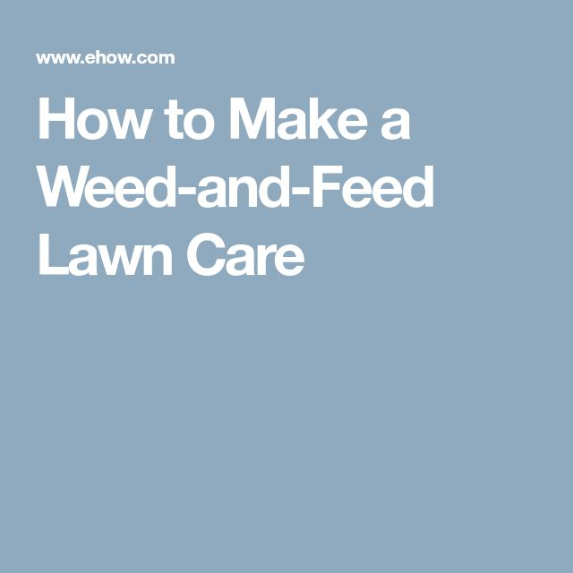 How to Make a Weed-and-Feed Lawn Care