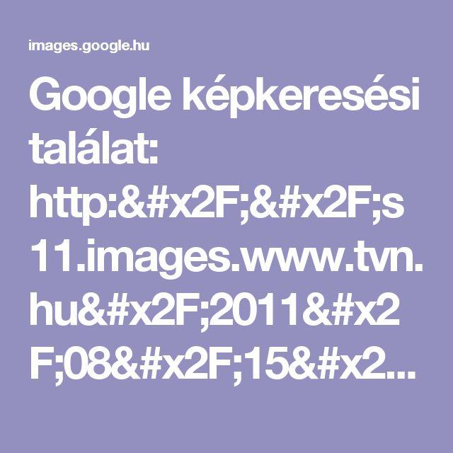 Google képkeresési találat: http://s11.images.www.tvn.hu/2011/08/15/19/00/www.tvn.hu_0eba55a8ab95f7930dd284a93691bf5e.jpg