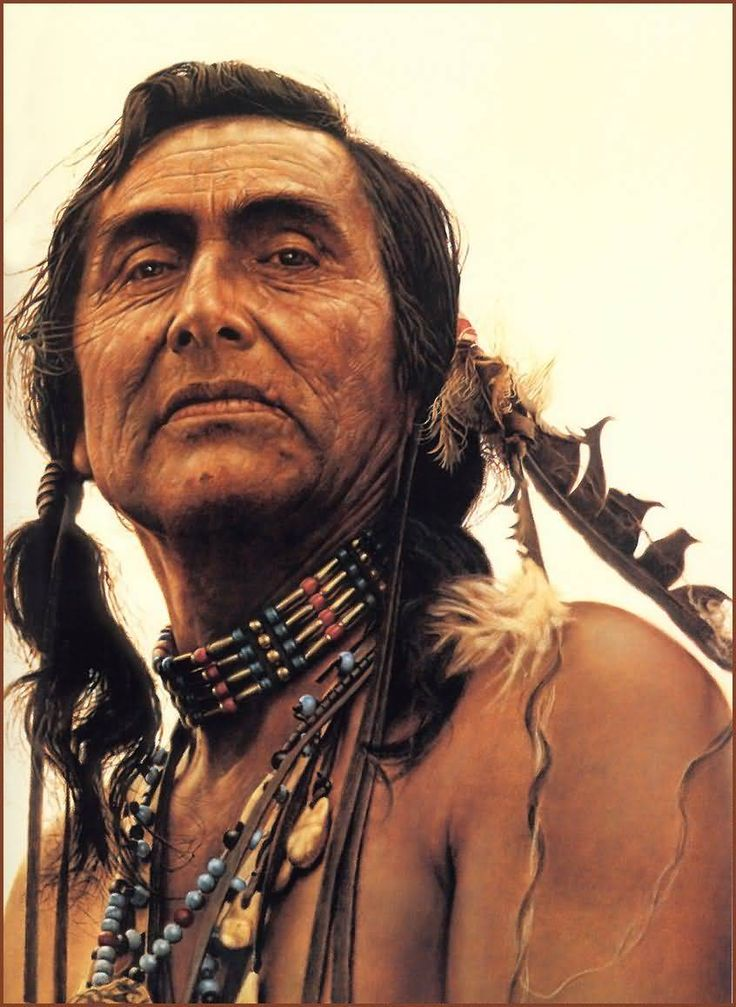 Portrait Of A Sioux