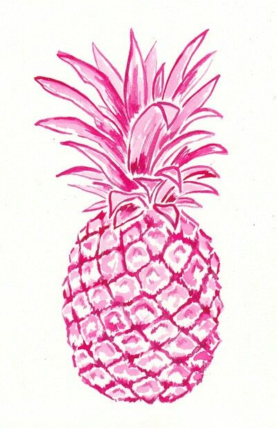 Nice watercolor/ink pineapple art!