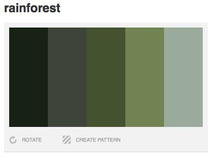 Rainforest color palette dark green grey green hunter for Dark green paint colors