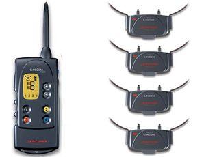 collier de dressage électronique à distance canicom 1500m pour 4 chien