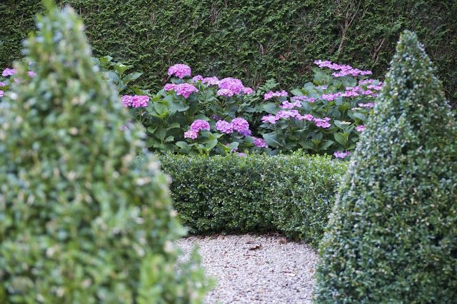 the lime walk: THE ART OF TOPIARY  According to historians, the p...