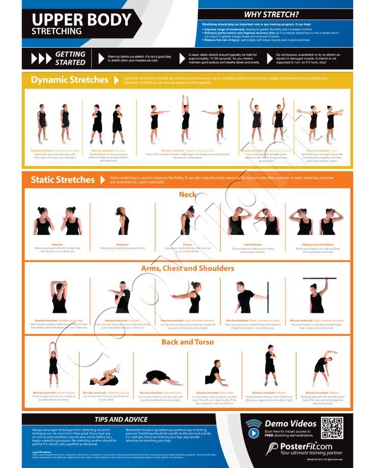 Upper Body Stretching Poster