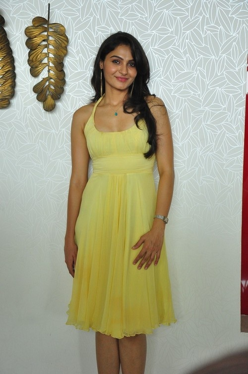 Andrea Jeremiah's Gorgeous Photocall at 'Thadaka' Movie Press Meet