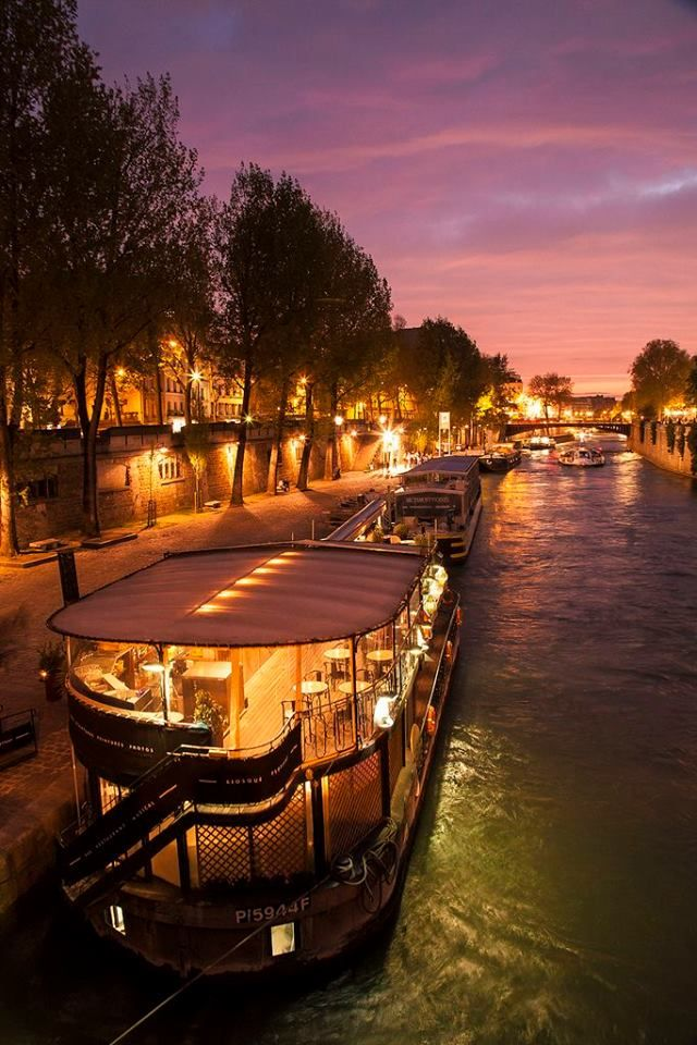 The lights of the Seine ~ Paris, France