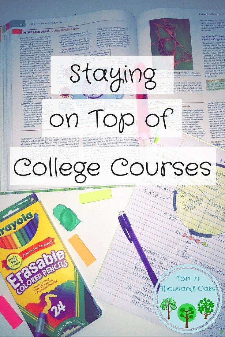 How to stay on top of your courses - college student study tips