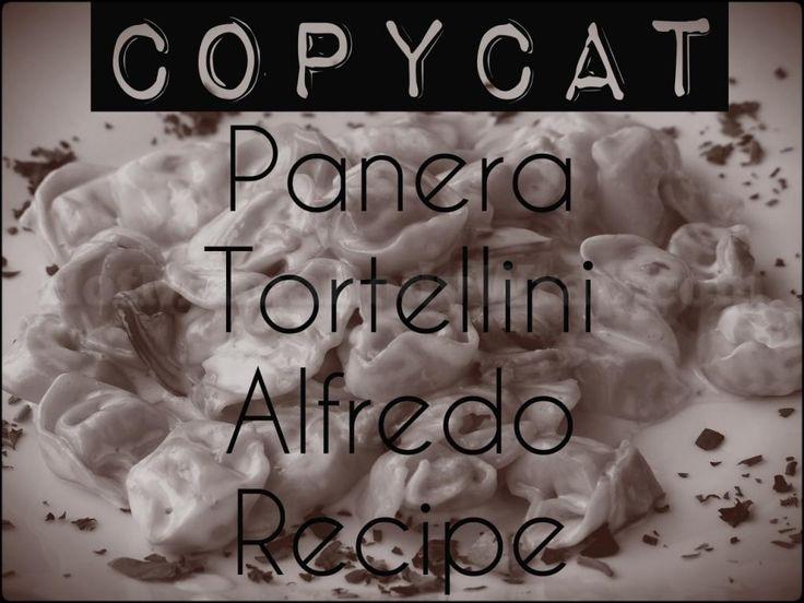CopyCat Panera Tortellini Alfredo