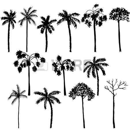 Les 25 meilleures id es de la cat gorie dessin palmier sur - Palmier dessin ...
