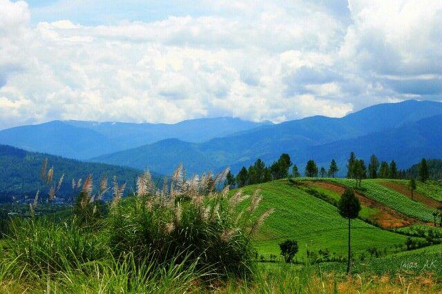 Bukit di Blangpegayon, Gayo Lues, Aceh, Indonesia.