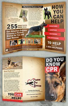 29 Best TriFold Animal Brochures Images On Pinterest Brochures