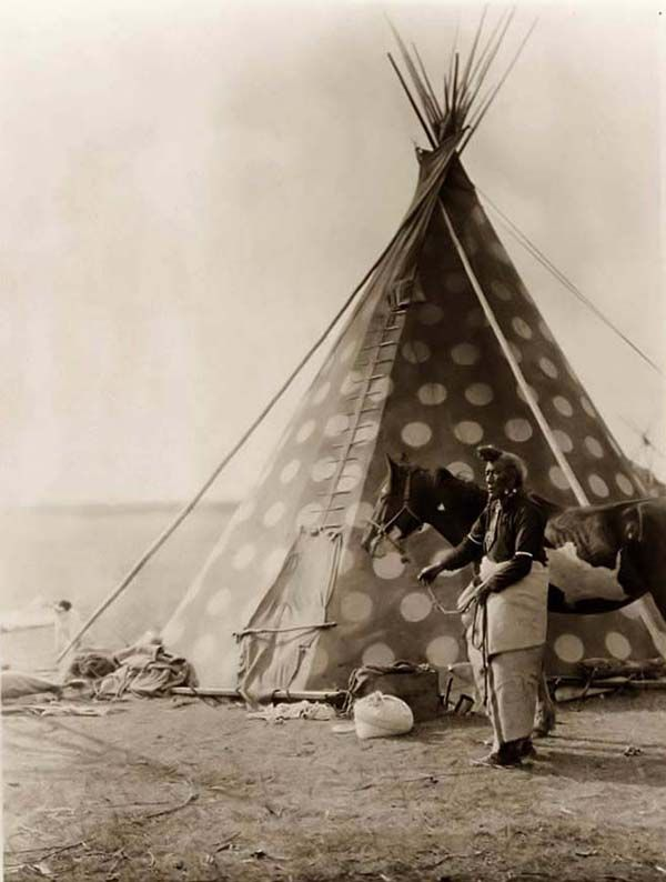 Picture of a Blackfoot Tepee. It was taken in 1927 by Edward S. Curtis.    The picture presents a Blackfoot Indian, Bear Bull, holding a horse outside his tipi.