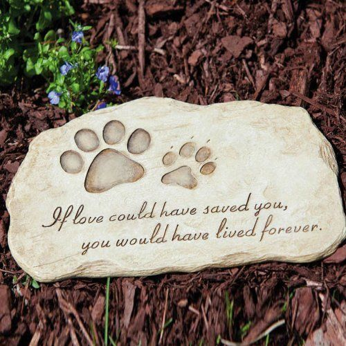 Image Result For Cat Garden Stepping Stones