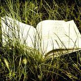 Comment Bien Revendre ses Livres d'Occasion ? http://www.comment-economiser.fr/revendre-ses-livres-occasion.html