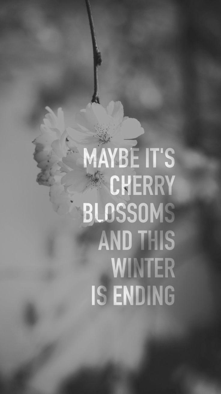 bts spring day lyrics | Bts spring day lyrics, Bts lyric