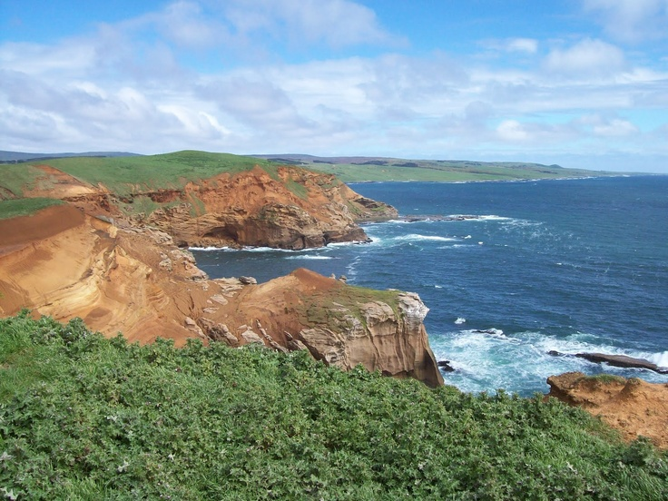 Chatham islands, Pacific ocean