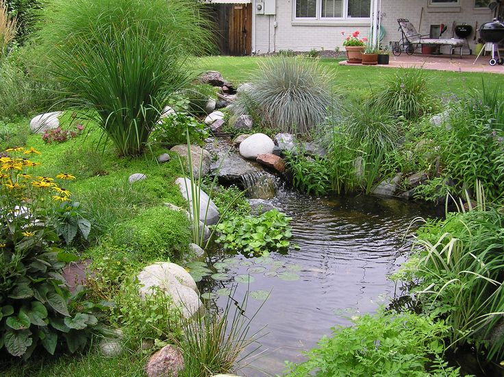 21 best ponds and decks images on pinterest water for Koi pool water gardens thornton