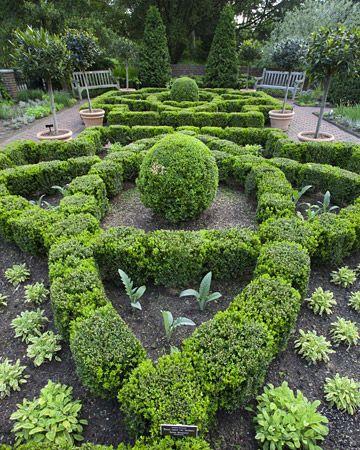 More of Martha Stewart's herb garden.