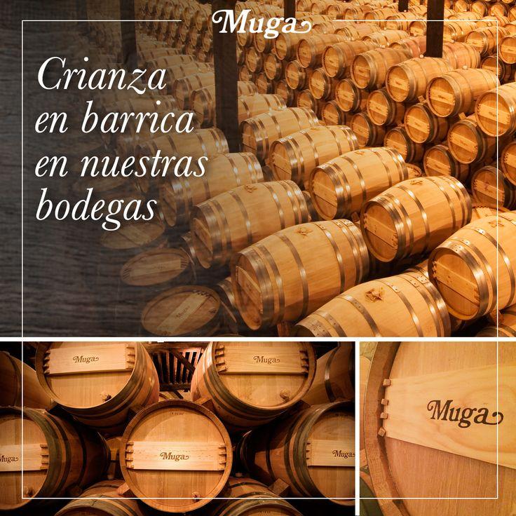 ¿#Sabíasque la crianza en barrica es el proceso de envejecimiento del vino en la misma? En nuestro caso se lleva a cabo en barrica bordelesa de 225 litros de capacidad de roble tanto francés como americano, durante 24 meses/// #Didyouknow that cask ageing is the process of the wine ageing in barrels? At Bodegas Muga this is carried out in 225-litre Bordeaux barrels, made of American and French oak, for 24 months. #bodegasmuga #muga #lariojaapetece #larioja #wine #winery #bodegas