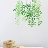 The maidenhair fern mobile is so pretty as a non traditional baby mobile (expose them wwrly@to beautiful plants!) or as a piece of home decor. One of my fave projects from @corriebethmakes #larsplants #larsmakes