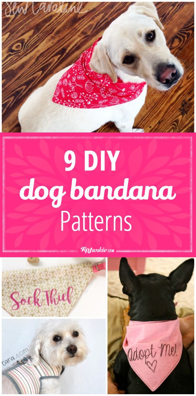 9 DIY Dog Bandana Patterns - Tap the pin for the most adorable pawtastic fur baby apparel! You'll love the dog clothes and cat clothes! <3