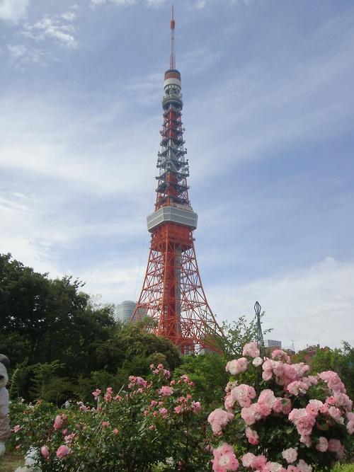 Tokyo Tower , Shiba Rose Garden, Tokyo, Japan