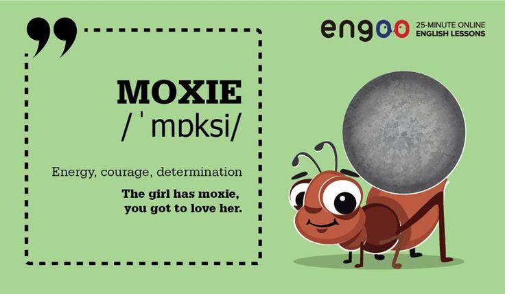 """Сегодня знакомимся со словом """"moxie"""", что означает """"дерзость, решимость""""."""