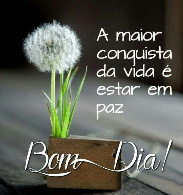 A melhor de todas!!! Bom dia!!!