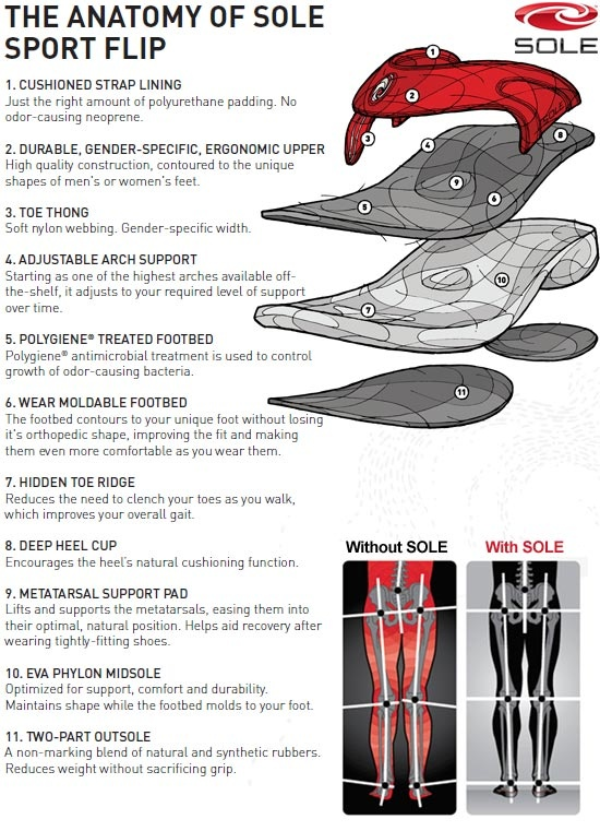 26 Best Footwear Anatomy Images On Pinterest Shoe Anatomy And