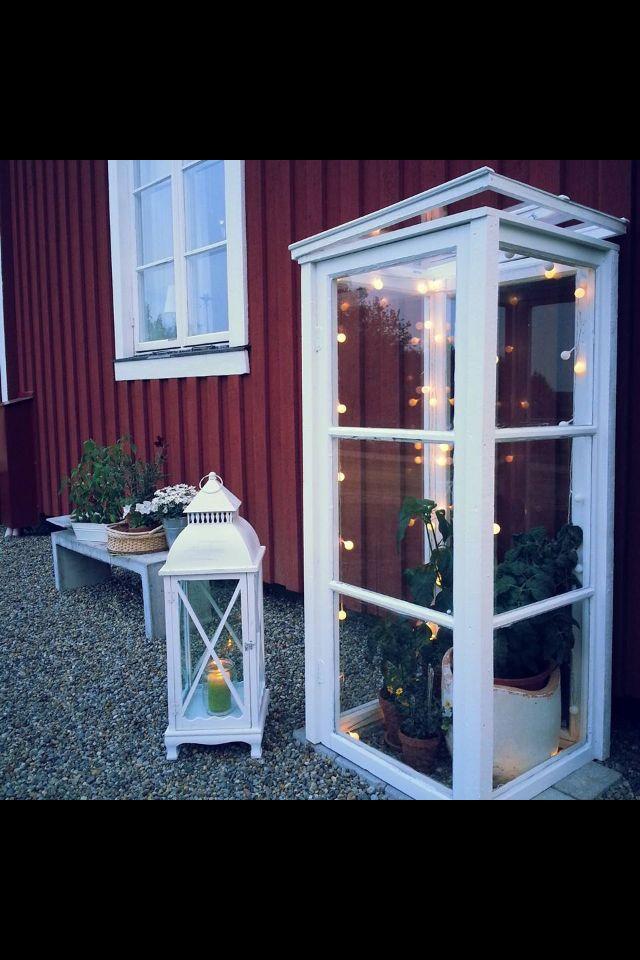 Mini växthus