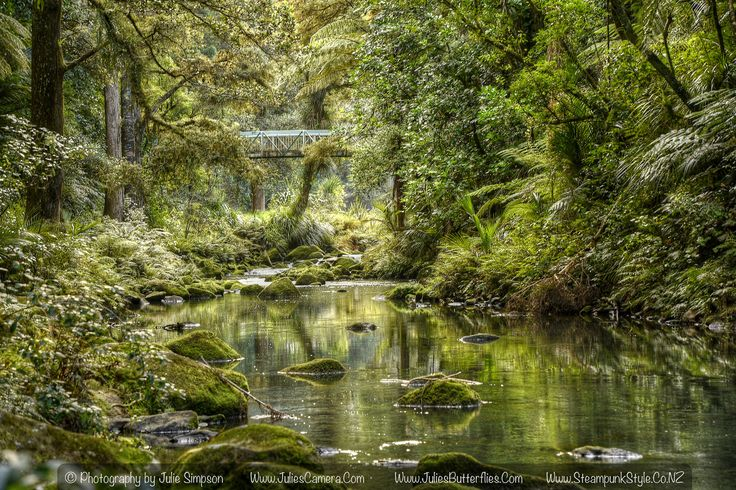 https://flic.kr/p/GsYYho | Green stream reflections and rocks