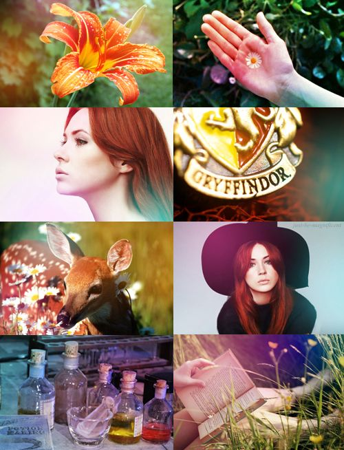 """HP characters   Lily Evans  """"Lily Evans. One of the brightest I ever taught. Vivacious, you know"""""""