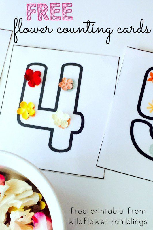Flower Counting Cards & Book {free printable} - Wildflower Ramblings