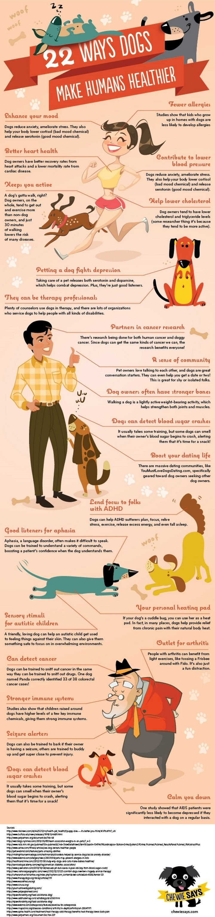 "The good pups at Cheewie Says decided to compile all the ways dogs help humans' health and create an adorable infographic about it! Here are 22 ways dogs can make humans healthier that you can point to (literally if you print this out) when cat people ask you, ""So WHY did you get a dog?"""