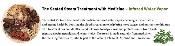 V Steam Spa | Cleanse Refresh Purify Wormwood Steam Sitz Bath