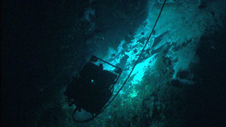 deep sea exploration - hmm-mmm