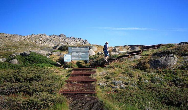 Thredbo to Mount Kosciuszko walk, Kosciuszko National Park. Photo: Elinor Sheargold