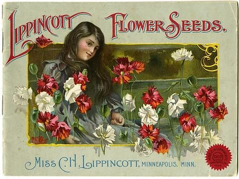 "A young girl surrounded by red and white flowers is pictured on the Carrie Lippincott 1905 catalog cover.  Carrie Lippincott, the self-proclaimed ""pioneer seedswoman"" and ""first woman in the flower seed industry"" established her mail-order flower seed business in Minneapolis in 1891. Sending out smaller 5 inch by 7 inch catalogs with colorful covers, her business was aimed at women customers."