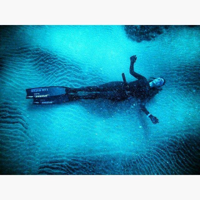 @blue_ocean_beth in the beautiful blue waters of Bermuda! #spierre #freediving #bermuda #iamwater #carbonfins